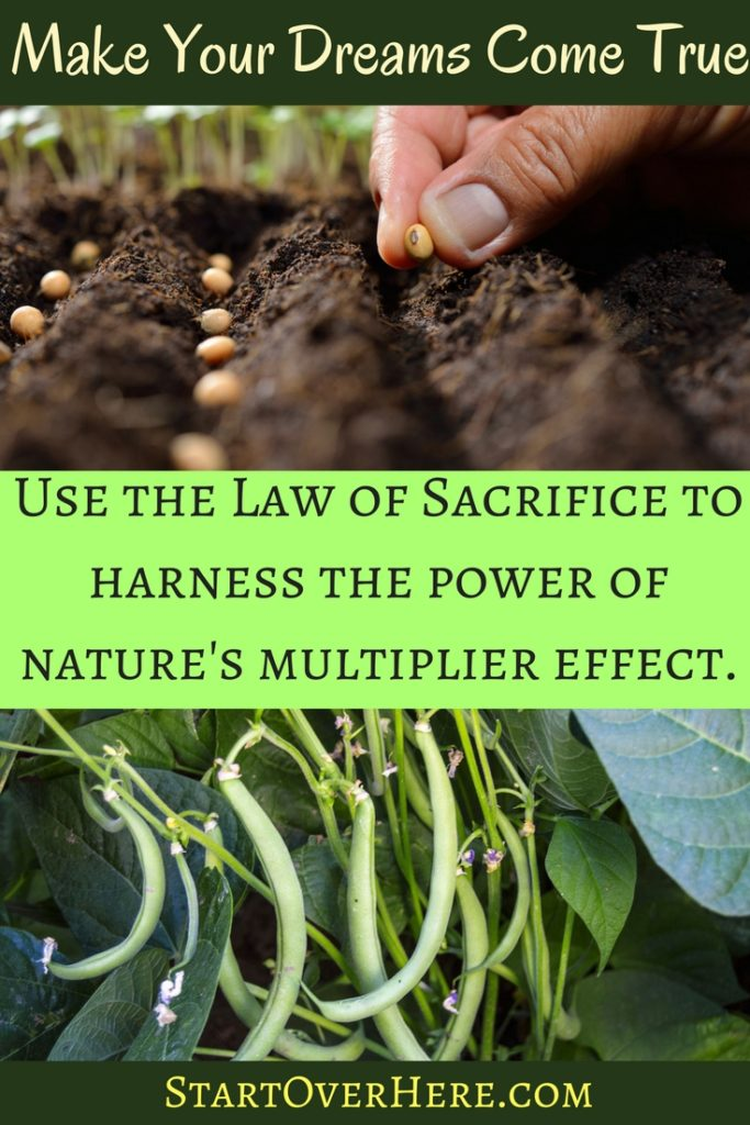 Life Hacks: Law of Sacrifice, Law of Cause and Effect, Sowing and Reaping, Law of Attraction. Harness the multiplier effect of nature to reap more than you sow in life. How to make your dreams come true.